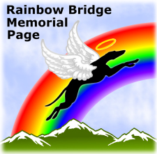 N.G.A. Dogs tha\ t have crossed the Rainbow Bridge